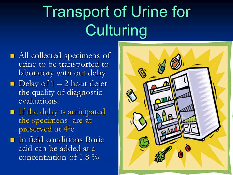 Transport of Urine for Culturing