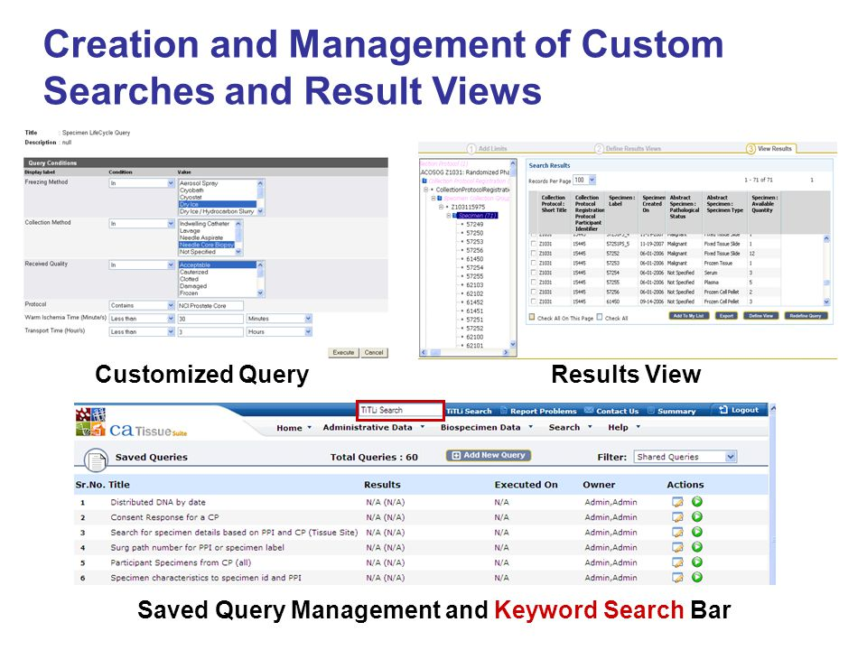 Saved Query Management and Keyword Search Bar