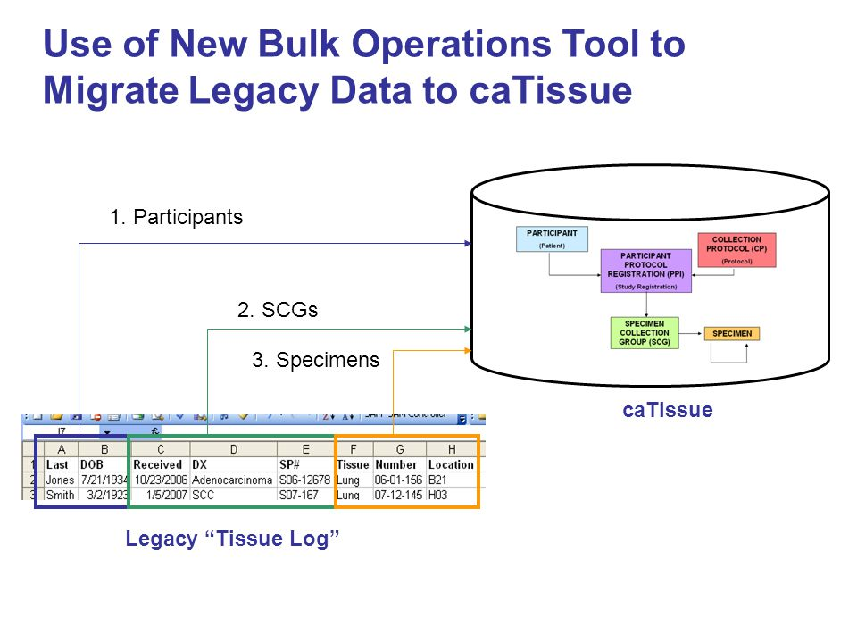 Use of New Bulk Operations Tool to Migrate Legacy Data to caTissue