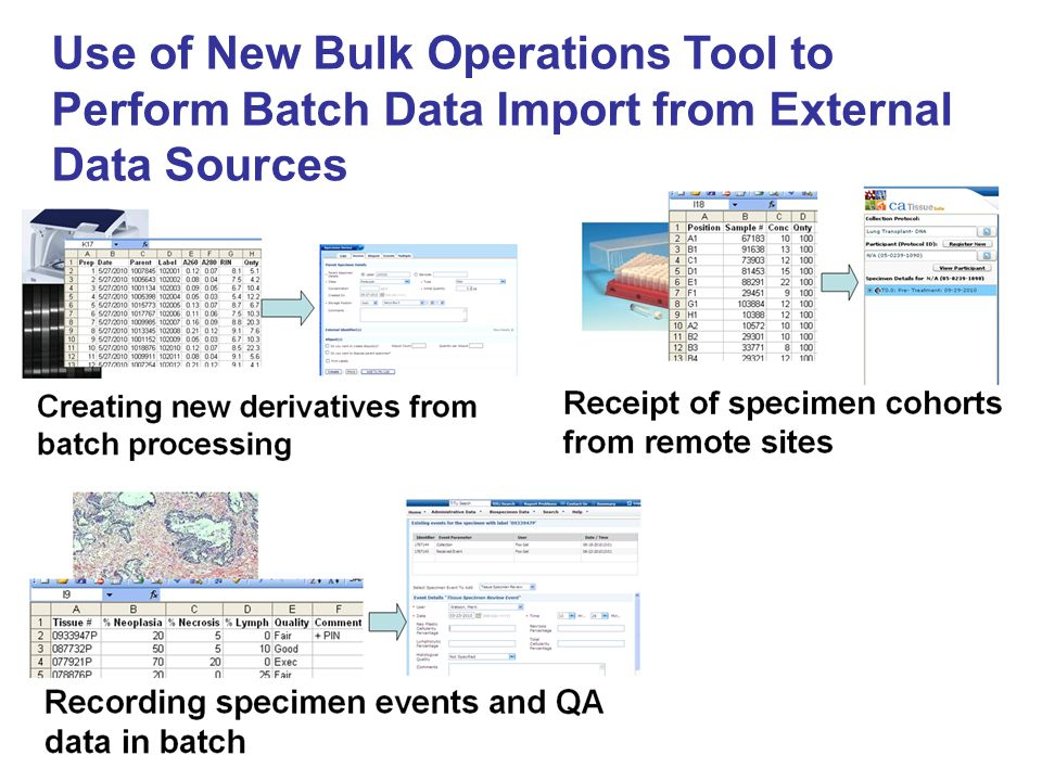 Use of New Bulk Operations Tool to Perform Batch Data Import from External Data Sources