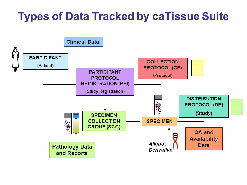 Types of Data Tracked by caTissue Suite