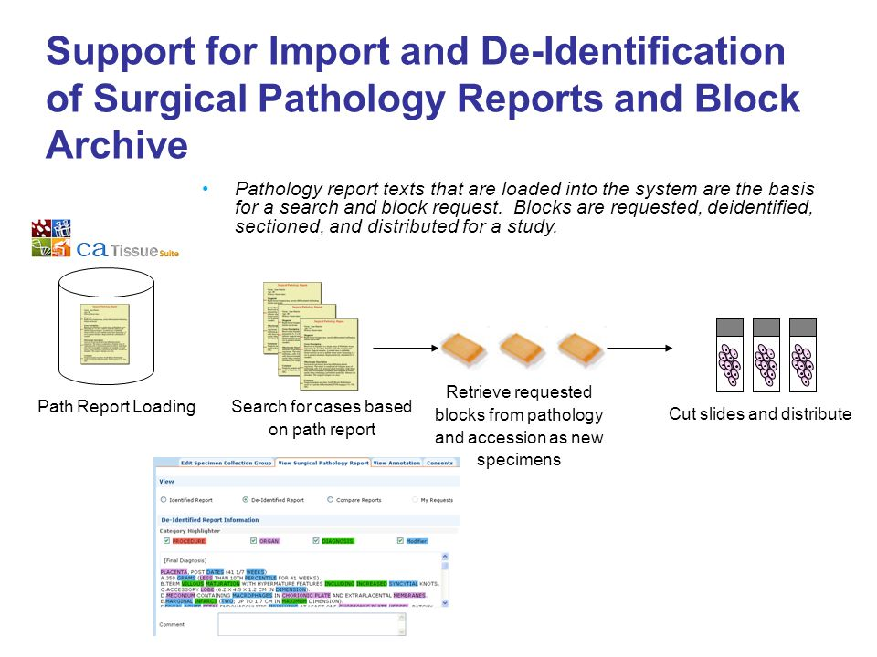 Support for Import and De-Identification of Surgical Pathology Reports and Block Archive