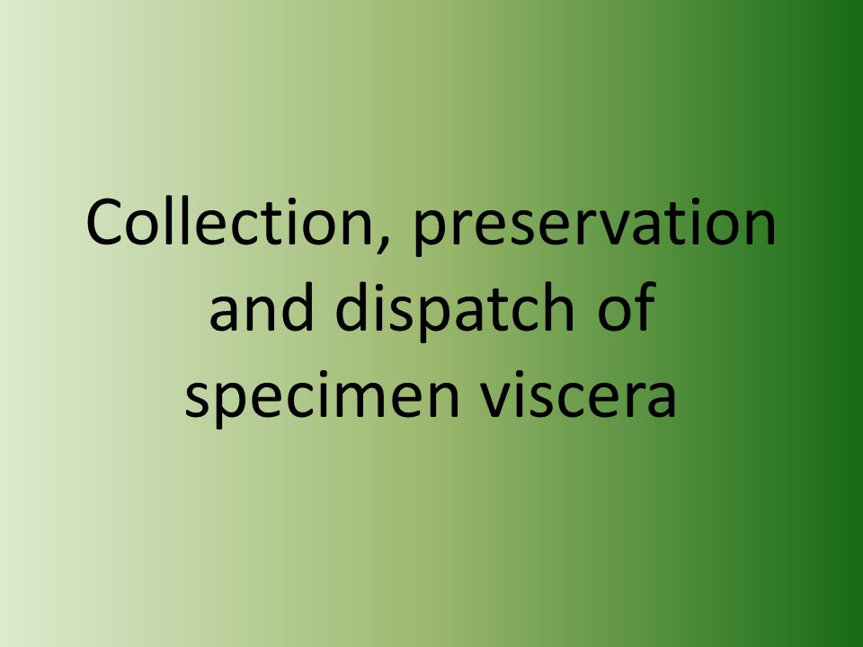 Collection, preservation and dispatch of specimen viscera
