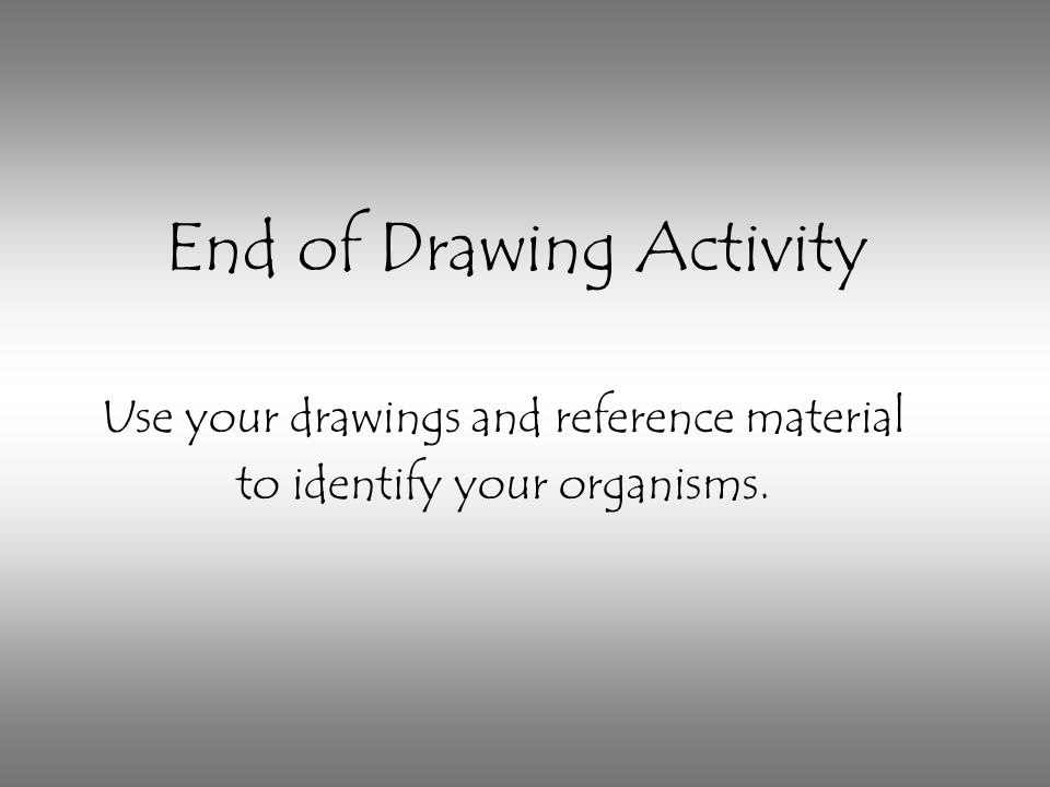 End of Drawing Activity