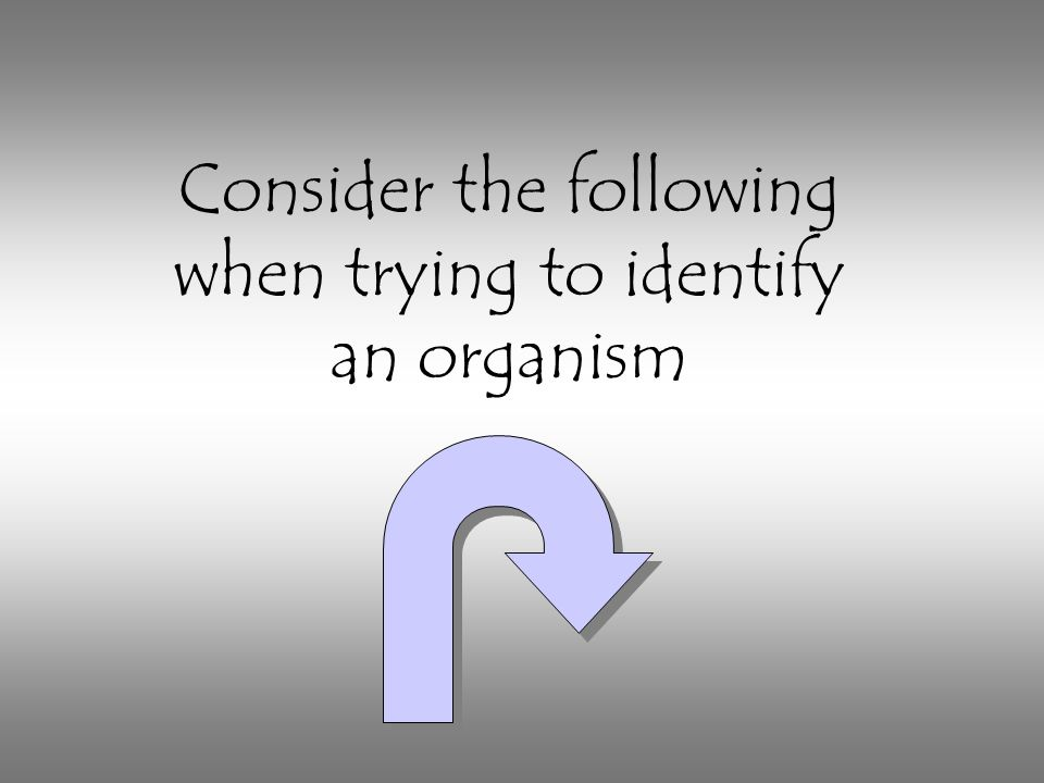 Consider the following when trying to identify an organism