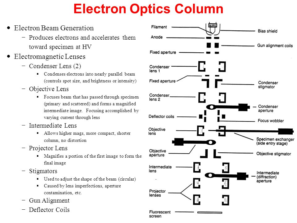 Electron Optics Column