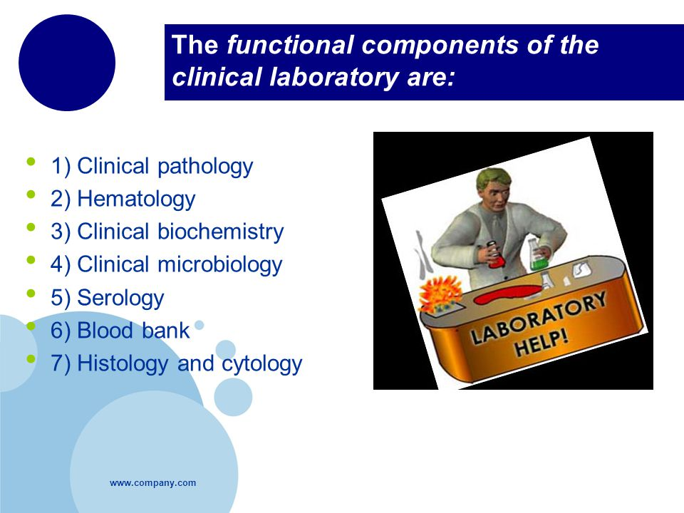 The functional components of the clinical laboratory are: