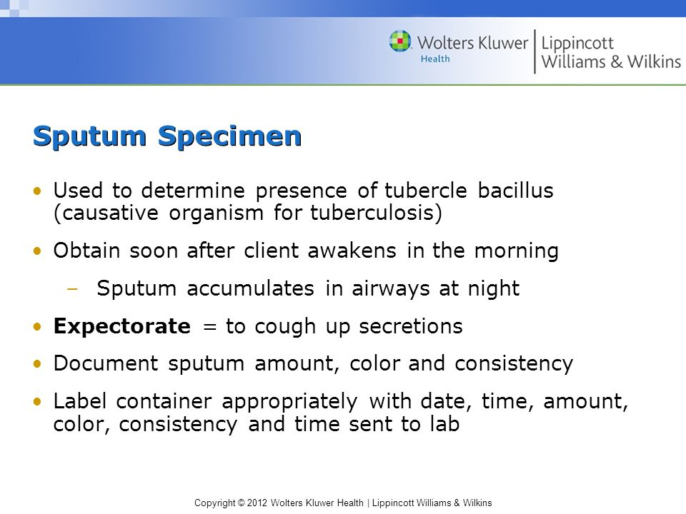Sputum Specimen Used to determine presence of tubercle bacillus (causative organism for tuberculosis)