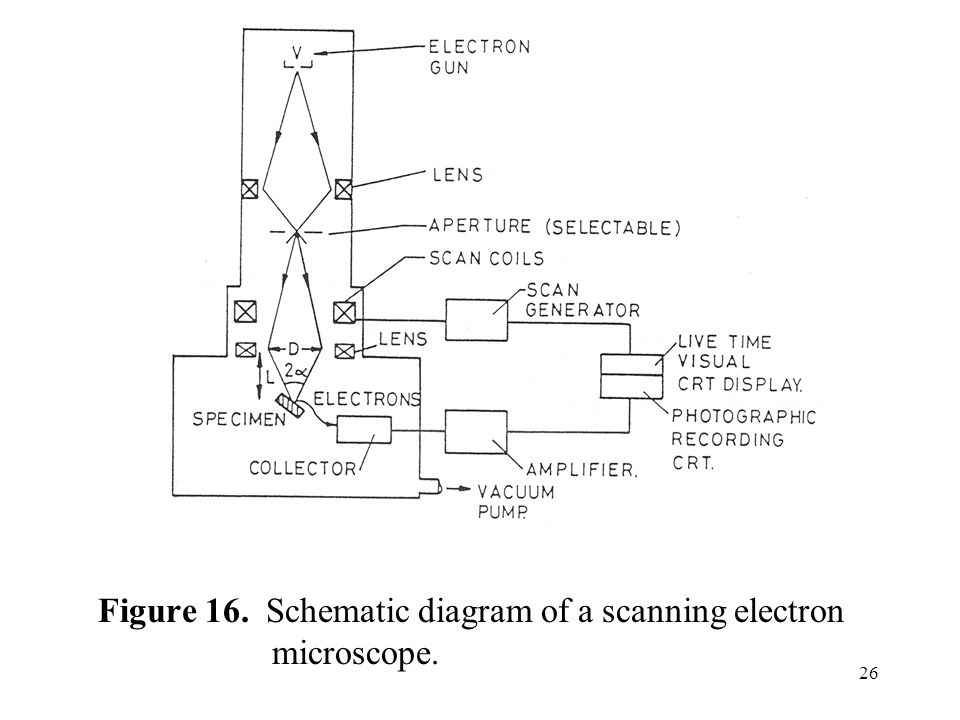scanning electron microscope schematic diagram  | diagramschematics.us