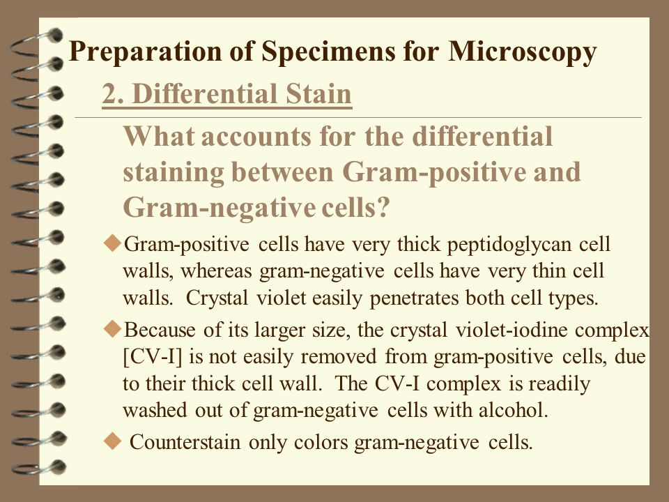Preparation of Specimens for Microscopy 2. Differential Stain