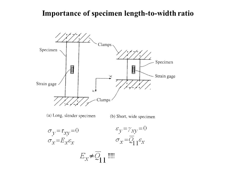 Importance of specimen length-to-width ratio