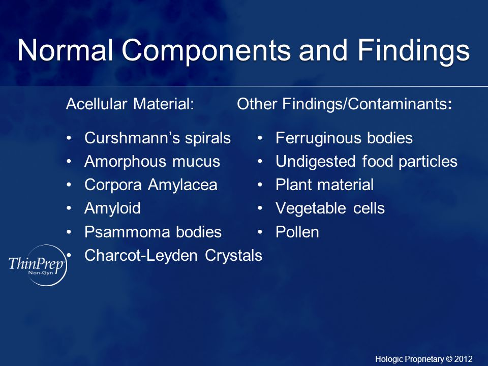 Normal Components and Findings
