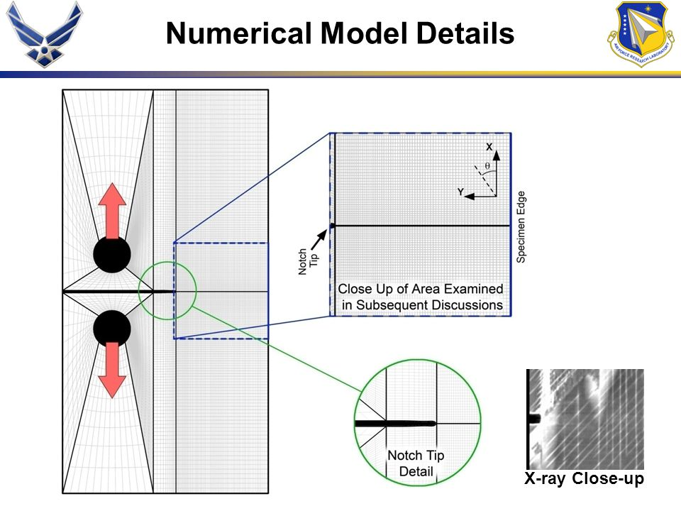 Numerical Model Details