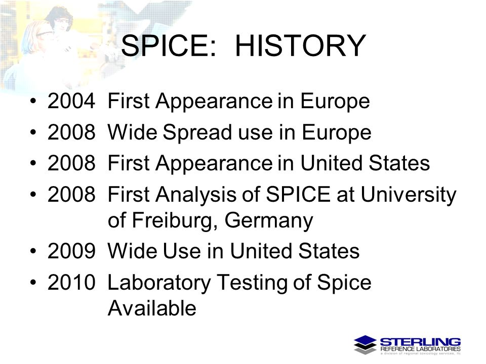 SPICE: HISTORY 2004 First Appearance in Europe