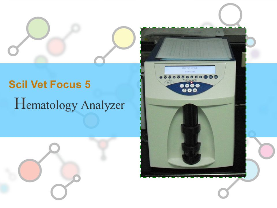 Scil Vet Focus 5 Hematology Analyzer