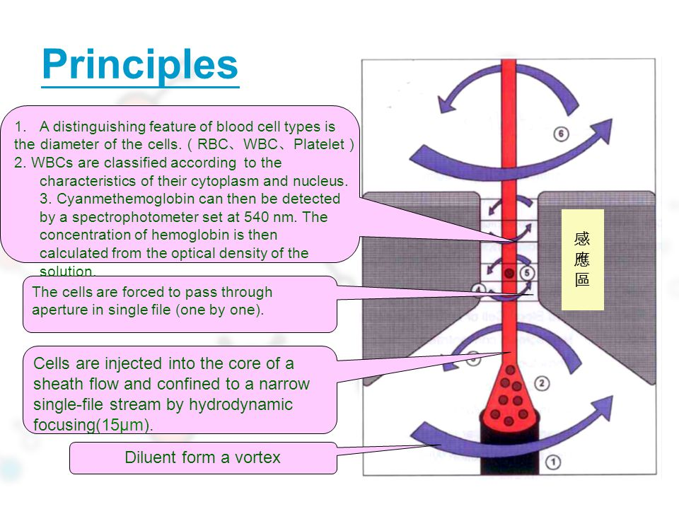 Principles 感 應 區 Cells are injected into the core of a