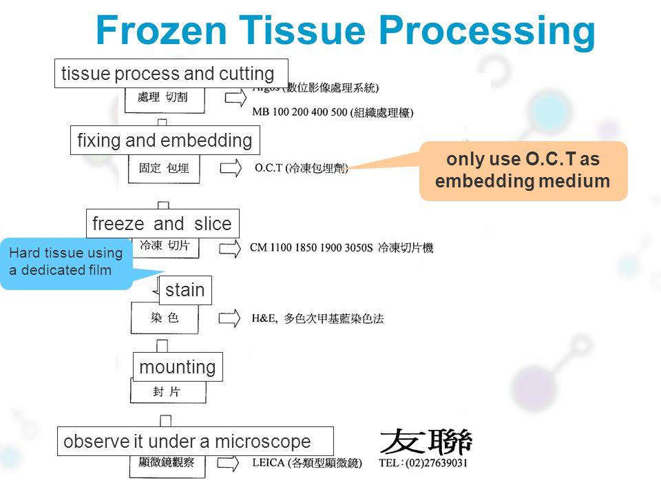 Frozen Tissue Processing