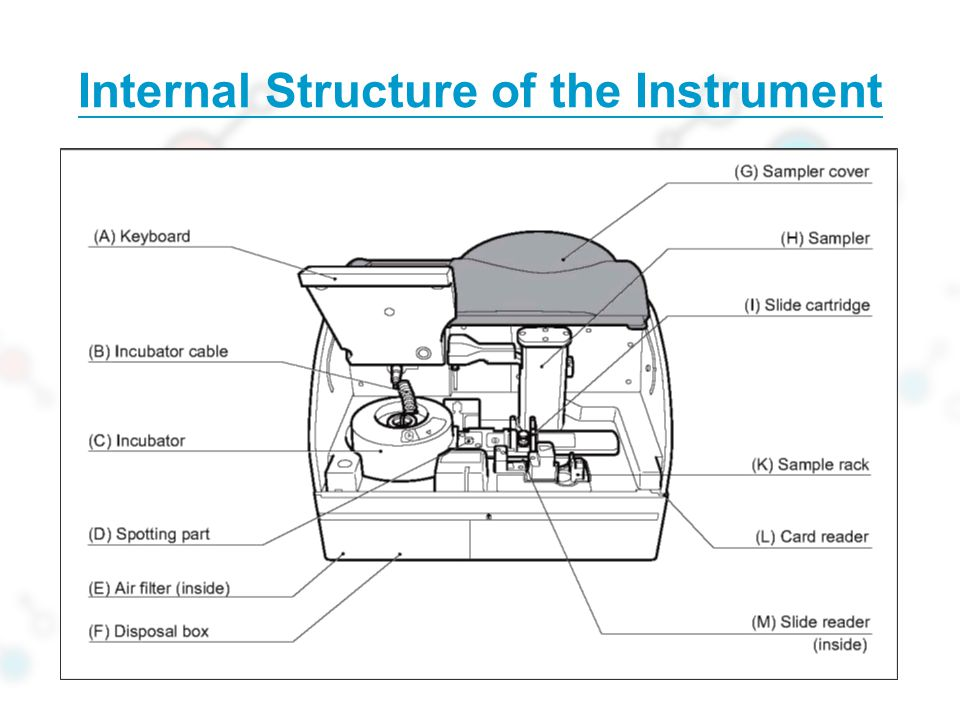 Internal Structure of the Instrument