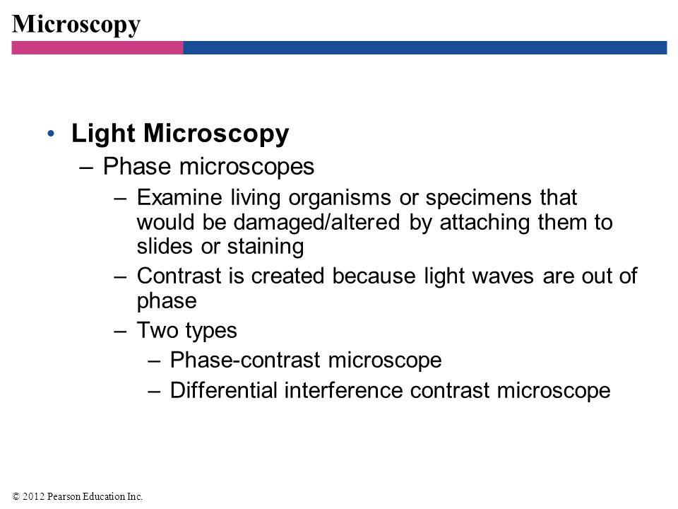 Microscopy Light Microscopy Phase microscopes