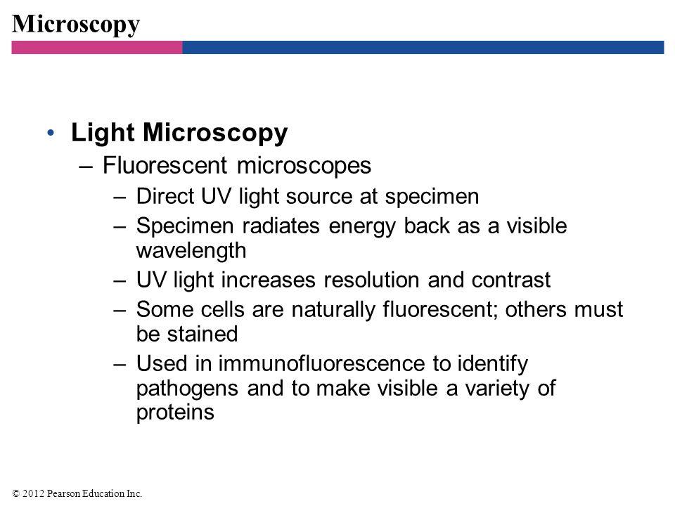 Microscopy Light Microscopy Fluorescent microscopes