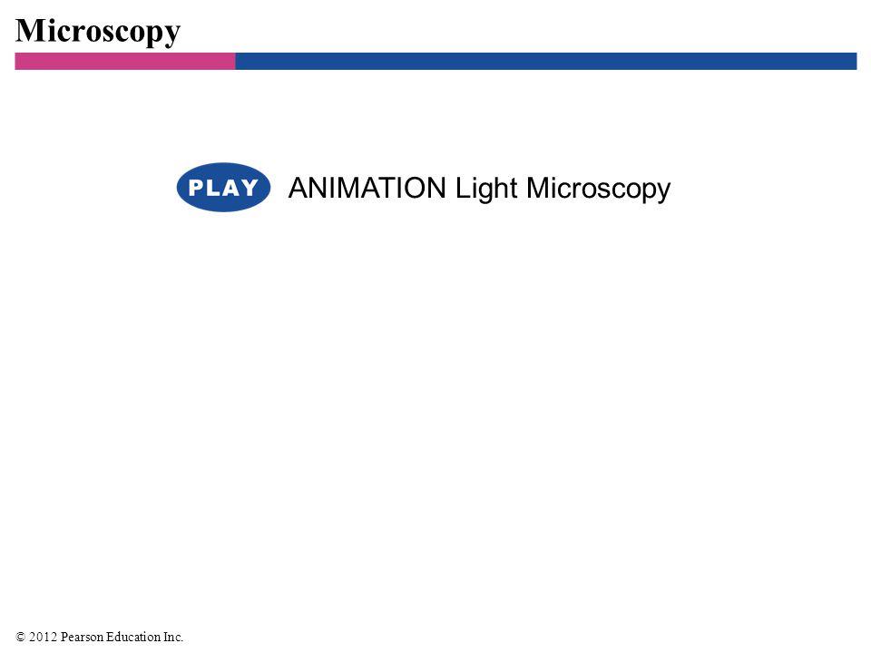Microscopy ANIMATION Light Microscopy © 2012 Pearson Education Inc. 22