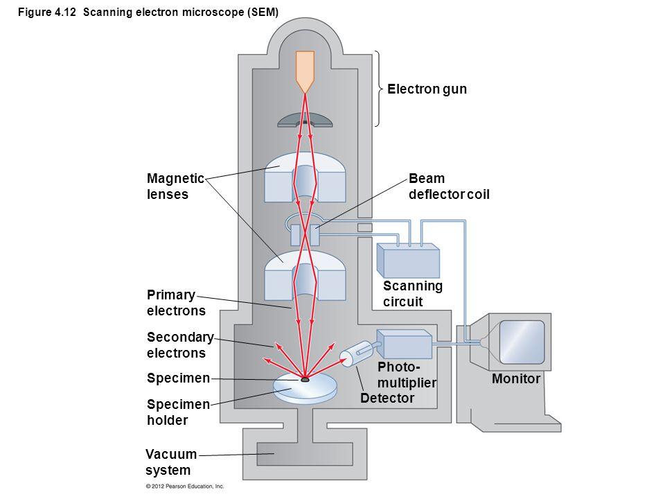 Figure 4.12 Scanning electron microscope (SEM)