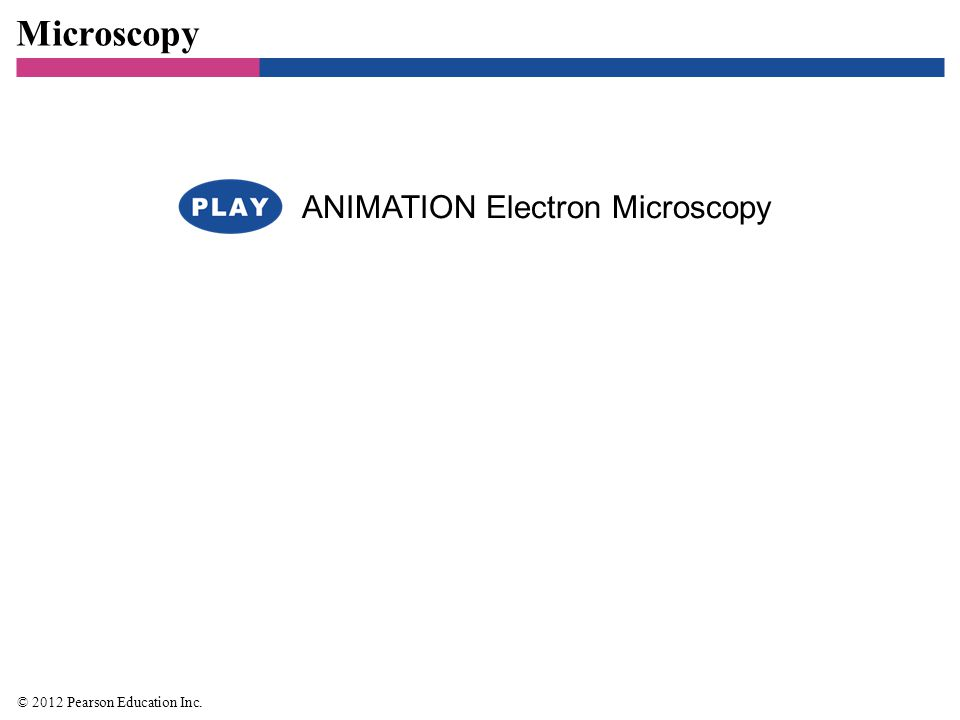 Microscopy ANIMATION Electron Microscopy 27