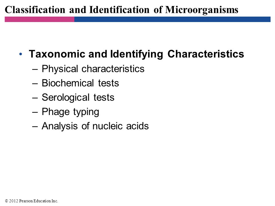 Classification and Identification of Microorganisms