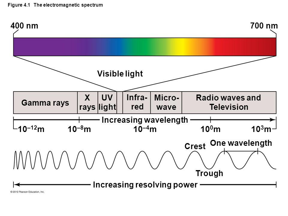 Figure 4.1 The electromagnetic spectrum