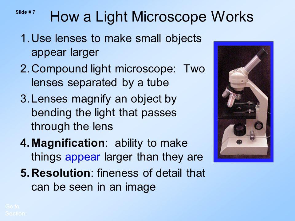 How a Light Microscope Works