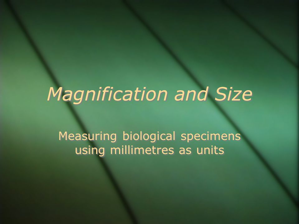 Magnification and Size