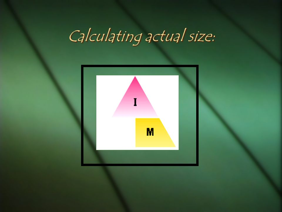Calculating actual size: