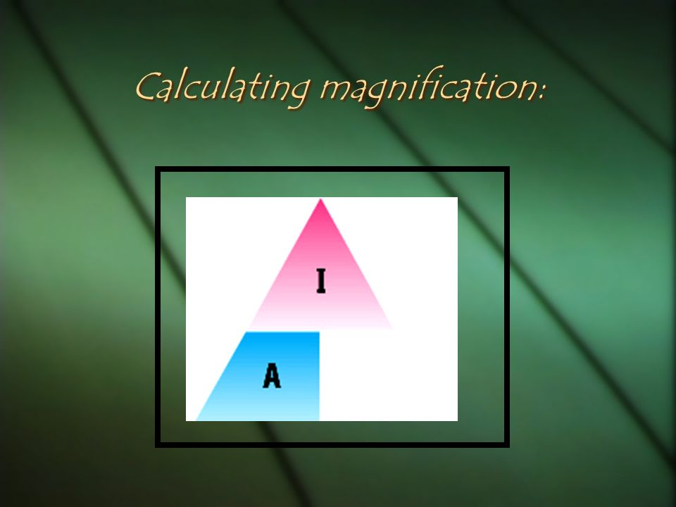 Calculating magnification: