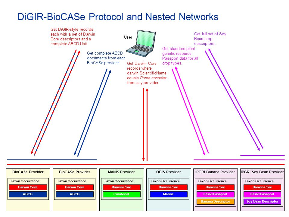 DiGIR-BioCASe Protocol and Nested Networks