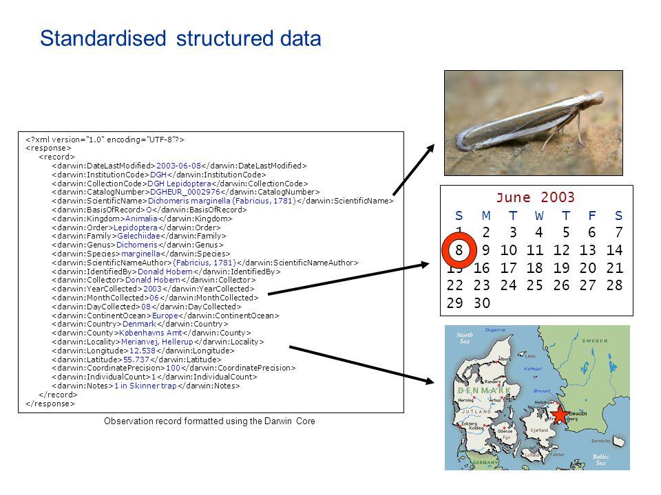 Standardised structured data