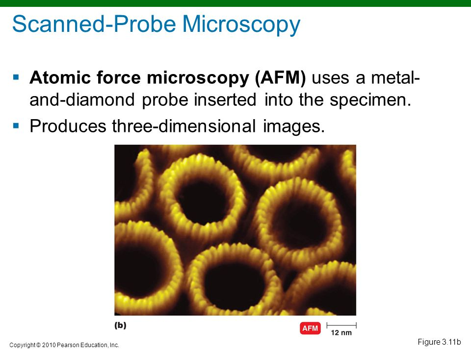 Scanned-Probe Microscopy