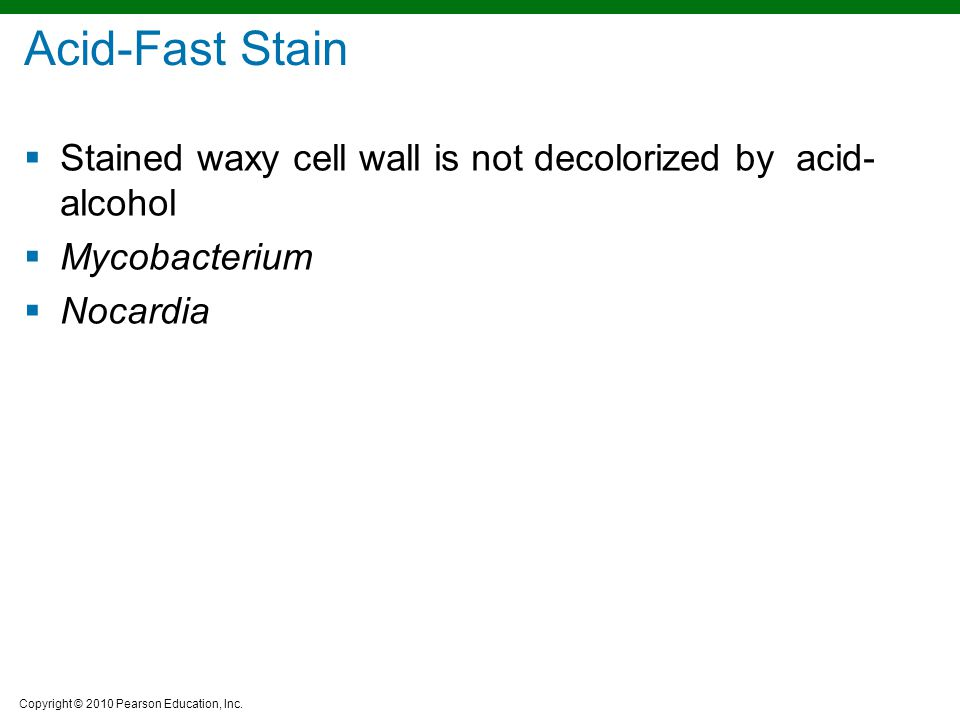 Acid-Fast Stain Stained waxy cell wall is not decolorized by acid-alcohol Mycobacterium Nocardia