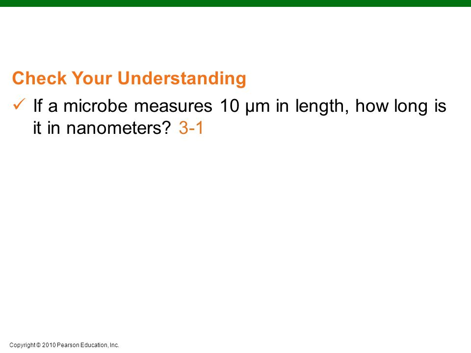 If a microbe measures 10 μm in length, how long is it in nanometers
