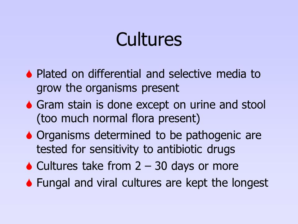 Cultures Plated on differential and selective media to grow the organisms present.