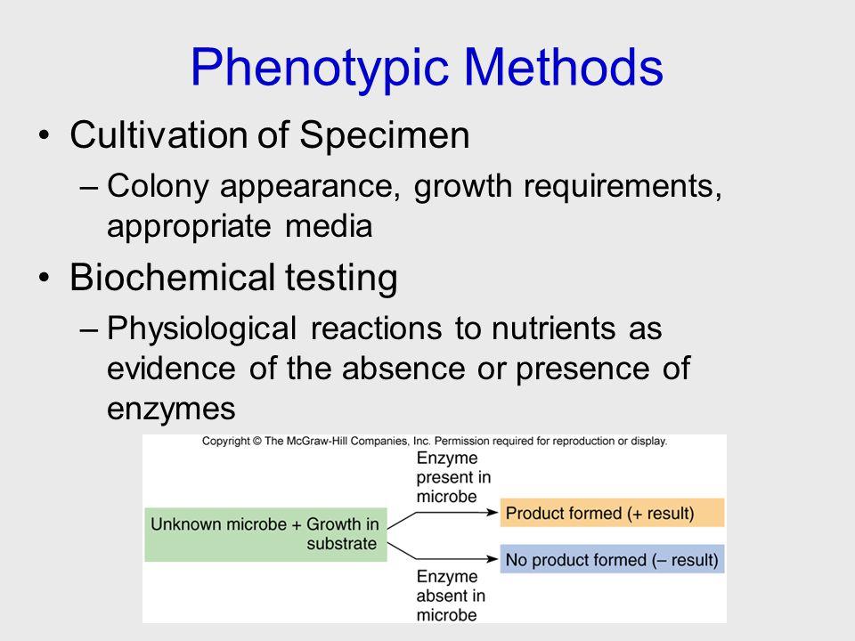 Phenotypic Methods Cultivation of Specimen Biochemical testing