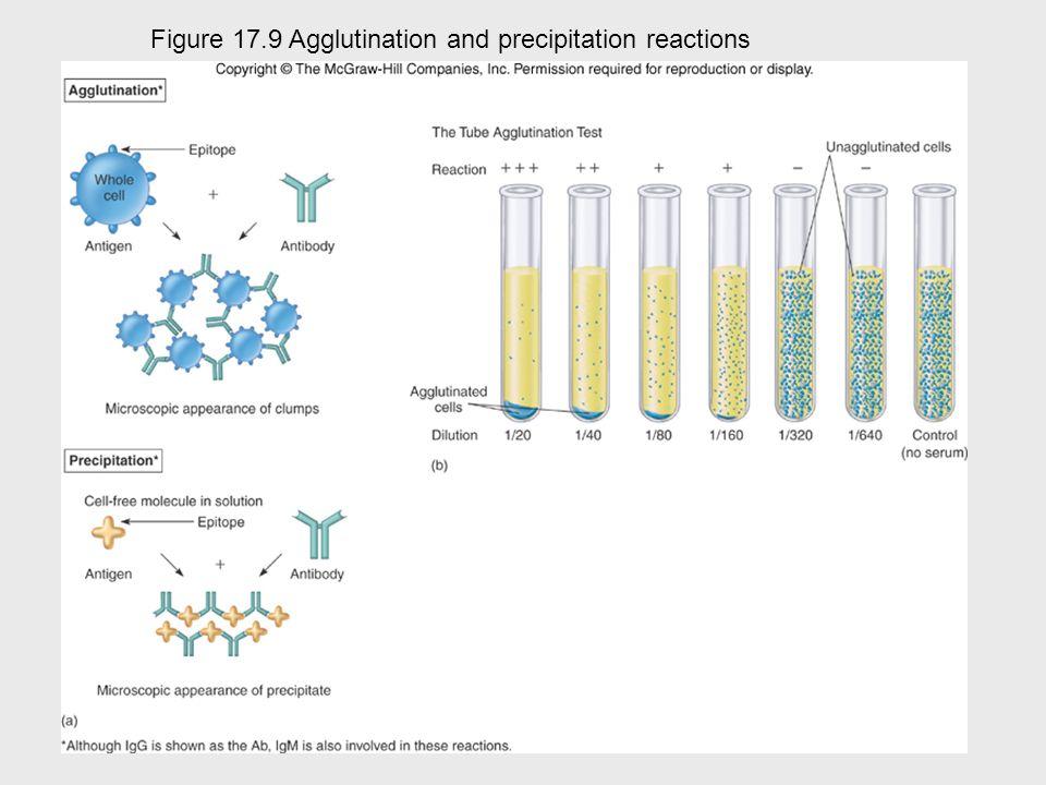 Cellular\molecular view