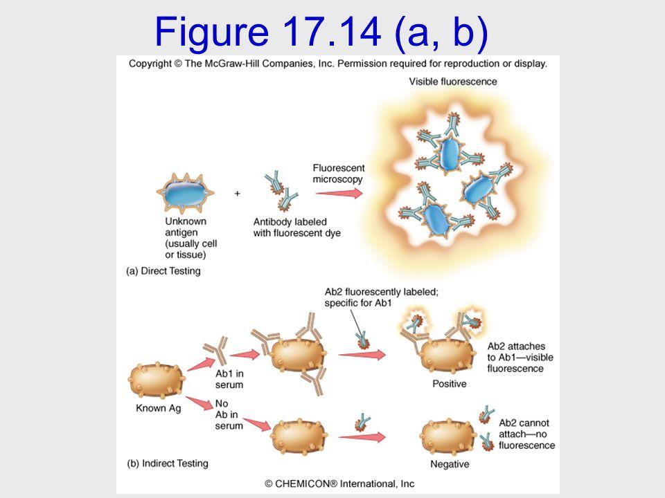 Figure 17.14 (a, b)