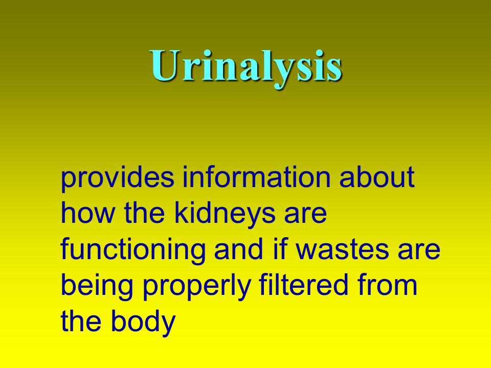 Urinalysis provides information about how the kidneys are functioning and if wastes are being properly filtered from the body.