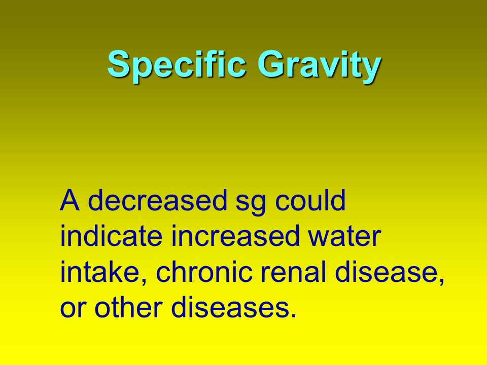Specific Gravity A decreased sg could indicate increased water intake, chronic renal disease, or other diseases.