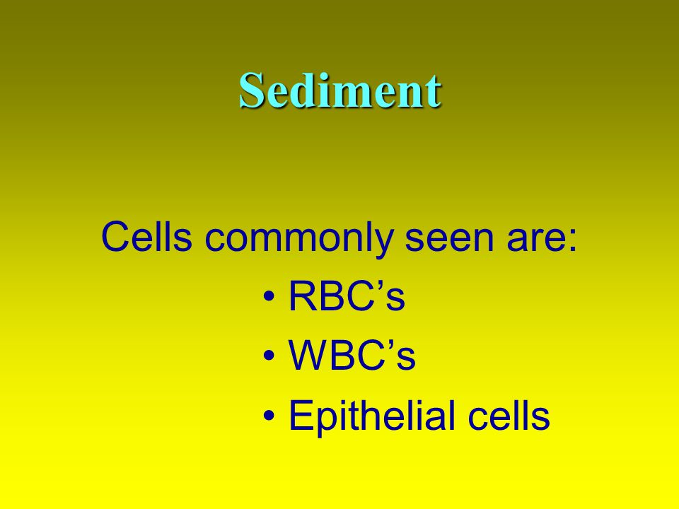 Cells commonly seen are: