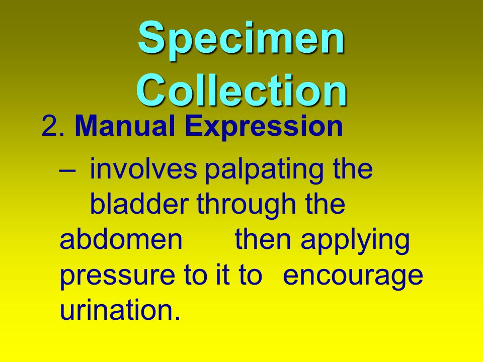 Specimen Collection 2. Manual Expression