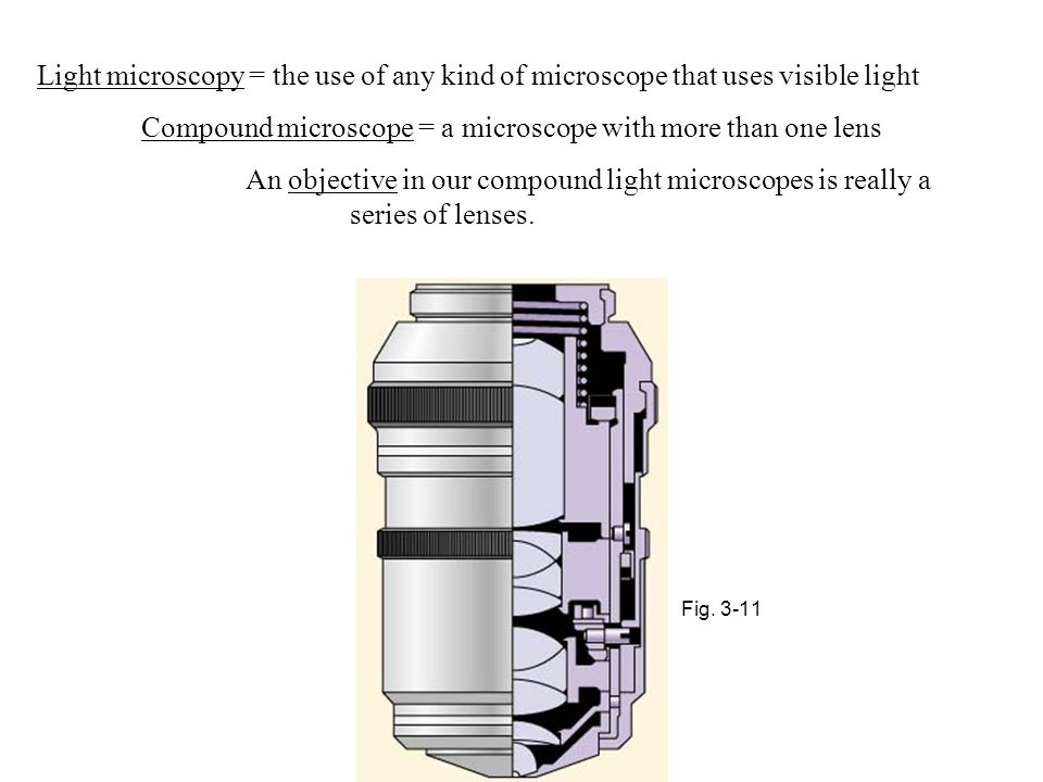 Compound microscope = a microscope with more than one lens