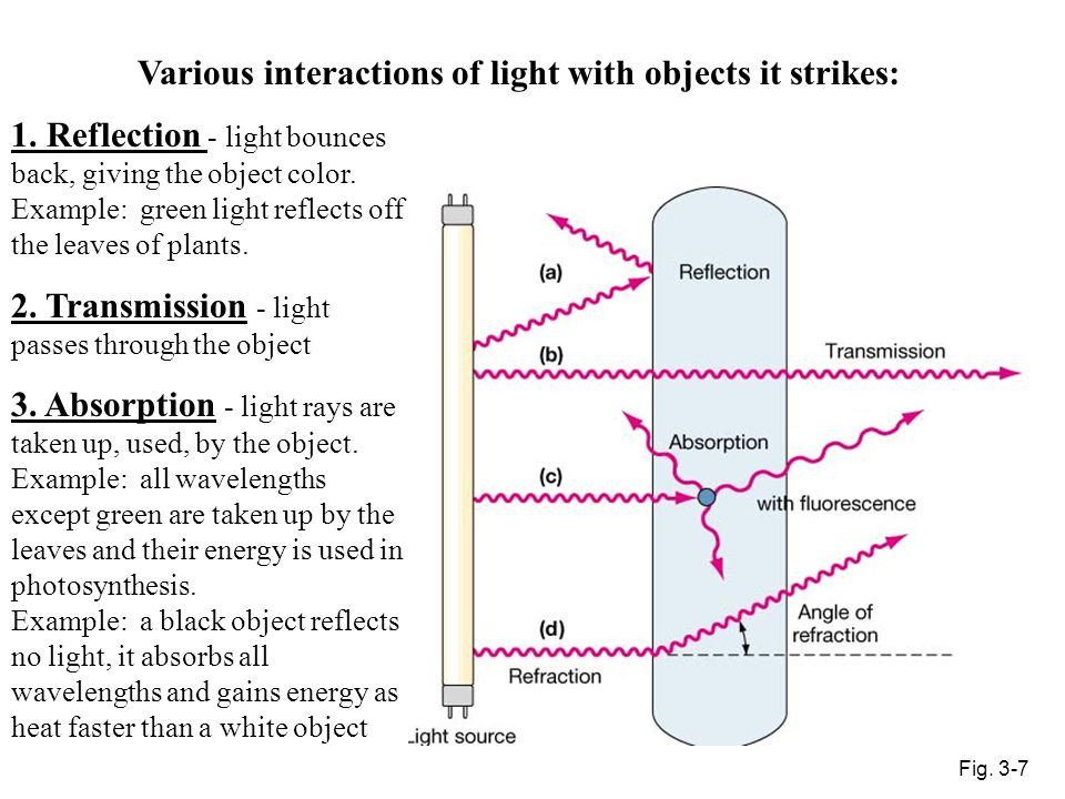 Various interactions of light with objects it strikes: