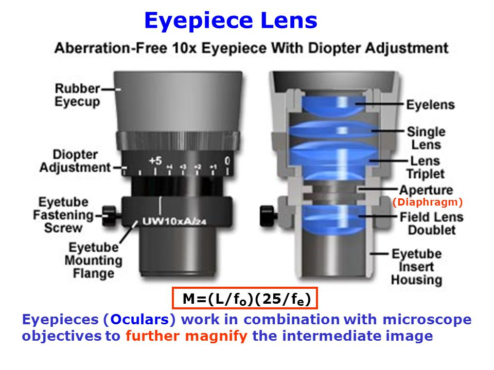 Eyepiece Lens M=(L/fo)(25/fe)