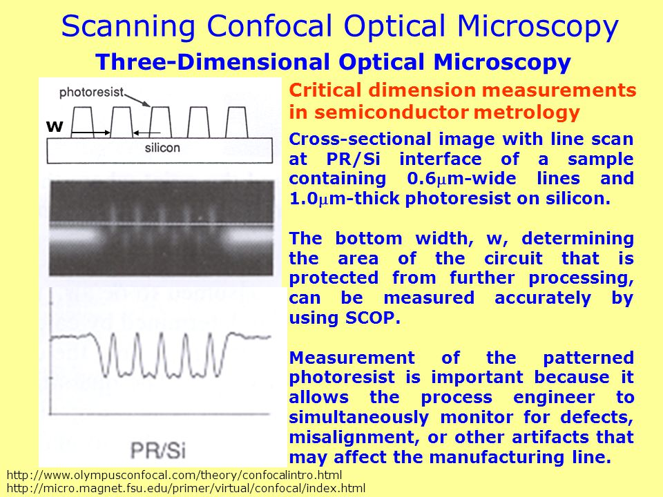 Scanning Confocal Optical Microscopy
